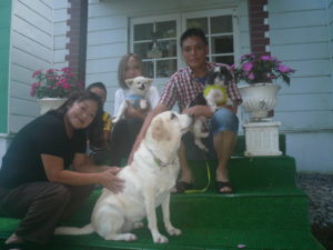 我が家の愛犬ナナシーとアカネちゃん