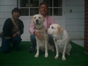 我が家の愛犬ララちゃん
