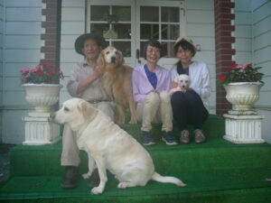 我が家の愛犬レナ・みゆ